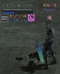 2006020506.jpg