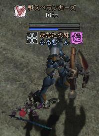 2006031304.jpg