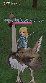 2006050808.jpg