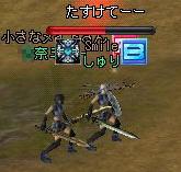 2007012603.jpg