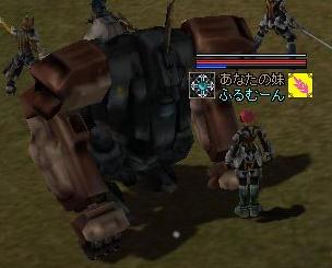 2007012608.jpg