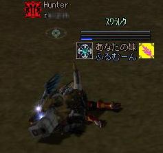 2007020706.jpg