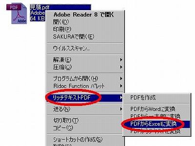 s-rt-pdf2.jpg