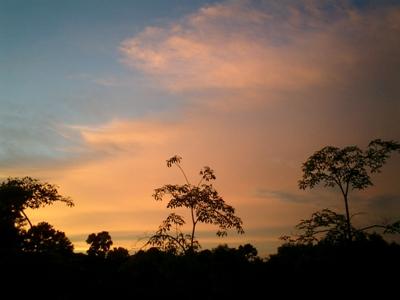 南国の夕焼け