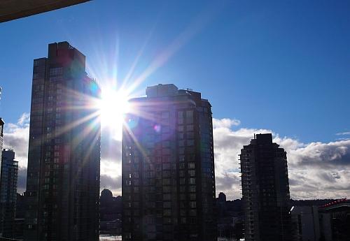 光がサンサンと降り注ぐ日