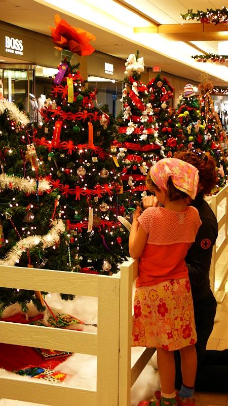 クリスマスツリーもいよいよ登場!