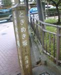 20061011004537.jpg