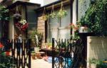 _garden1.jpg
