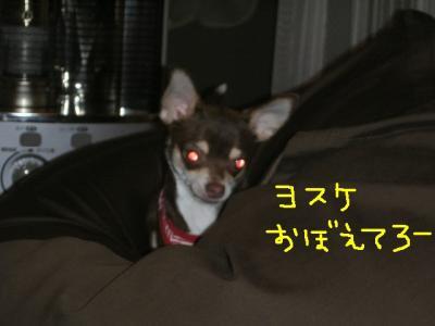 KICX1066moji.jpg
