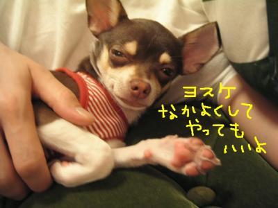 KICX1084moji.jpg