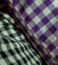 20060611210940.jpg