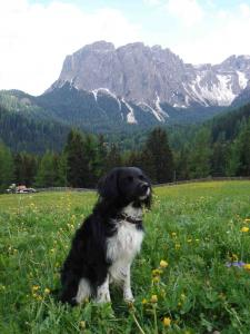kirin-montagna2-11may07.jpg