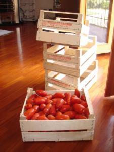 pomodori-cassa.jpg