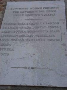 venezia6.25.04.07.jpg