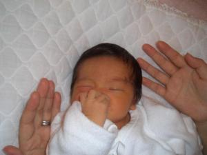 手のひらサイズ