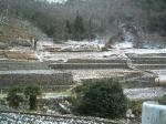2007-12-31-2.jpg