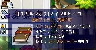 MS20070329_11.jpg
