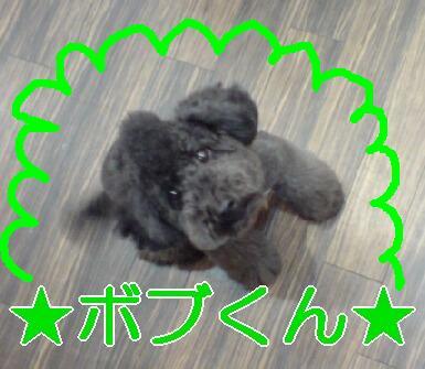 20071207173250.jpg