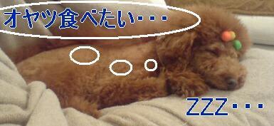 20080120214332.jpg