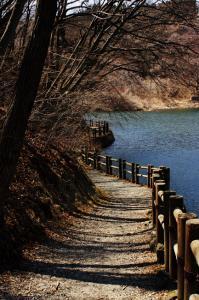 碓氷湖-小道