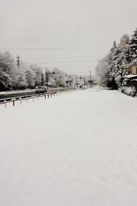 雪の朝-風景01