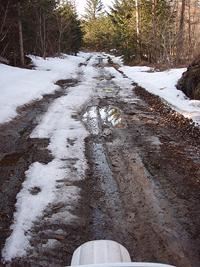 雪解けの林道