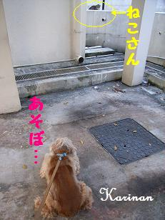ブログ 3.11 ④ RIMG3932
