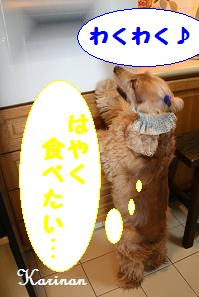ブログ 4.17 ② コピー (1) ~ IMG_7400
