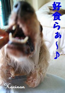 ブログ 4.17 ⑥ コピー (1) ~ IMG_7469