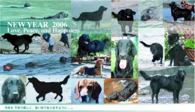 2006-.jpg