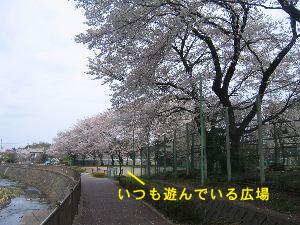 20060402124553.jpg