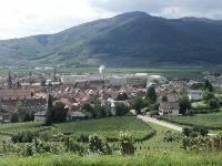 チュクハイムの村を葡萄畑の高台から