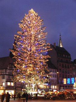アルザスのクリスマスツリー