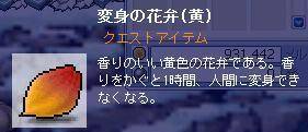 NT0000501.jpg