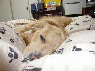 ベッドの上1