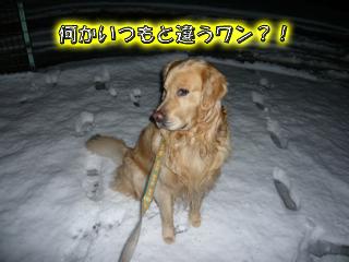 大雪ブログ1