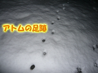 大雪ブログ2