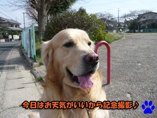 記念撮影ブログ1