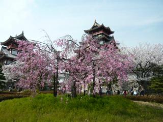 桃山城ブログ3