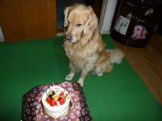 5歳誕生日ブログ2
