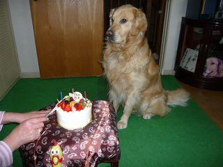 5歳誕生日ブログ3