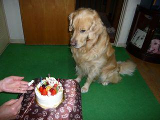 5歳誕生日ブログ4jpg