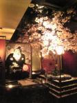 夜桜でありんす♪