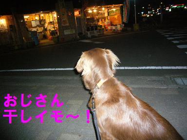 20070219004621.jpg