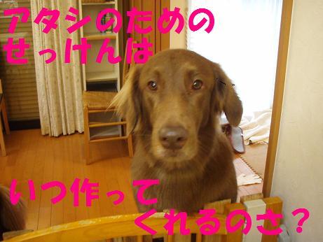 25DEC07 444
