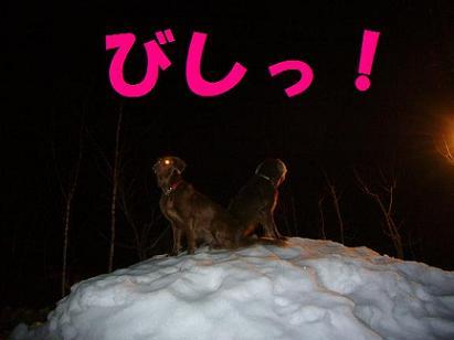 コピー ~ 01-03MAR07 URABANDAI 554