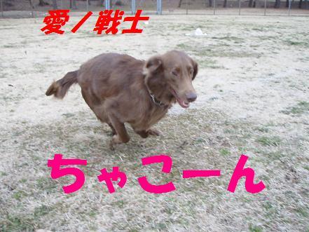 ainosenshi.jpg