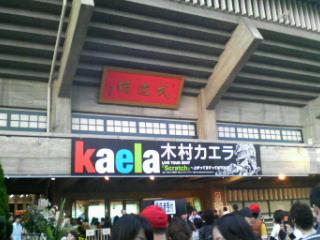 カエラ武道館公演!