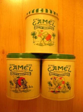 CAMEL缶増殖中