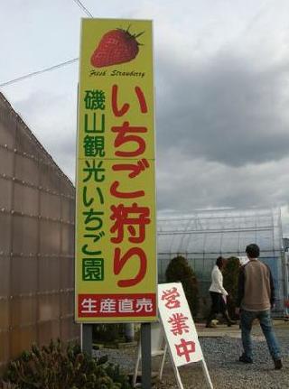 いちご2008
